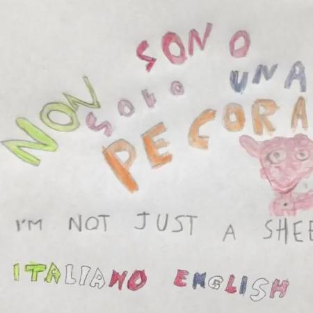 NonSonoSoloUnaPecora2