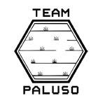 team_paluso_logo72dpi_150x150